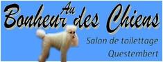chien chiot, chat, pour chien, pour chat, toilettage, épilation chat, coupe pour chien, questembert, 56
